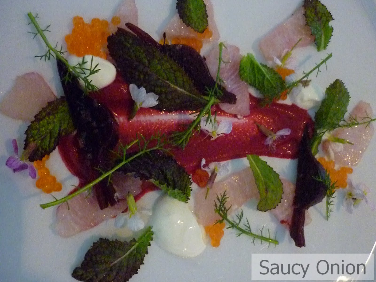 Saucy Onion: Bowral, NSW - Biota Dining Restaurant