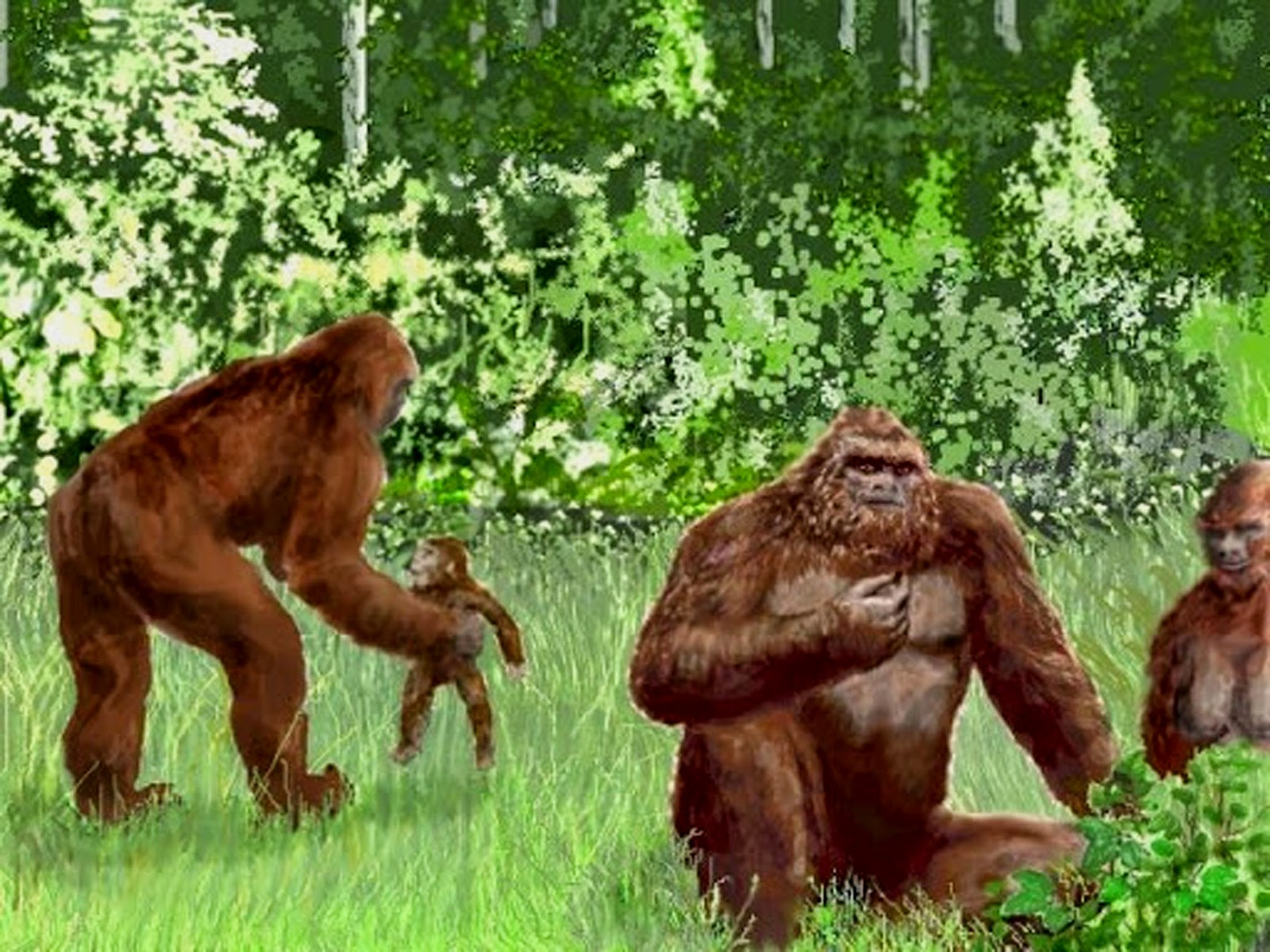 Gaint Gorilla Fierce Pic