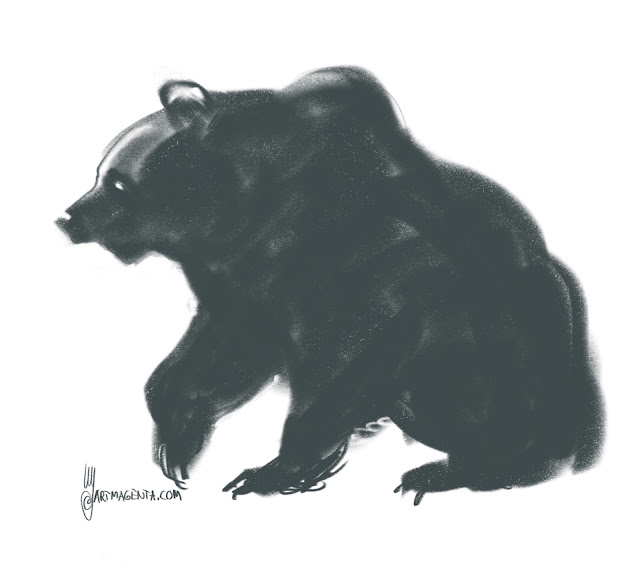 Bear charcoal drqwing by Artmagenta