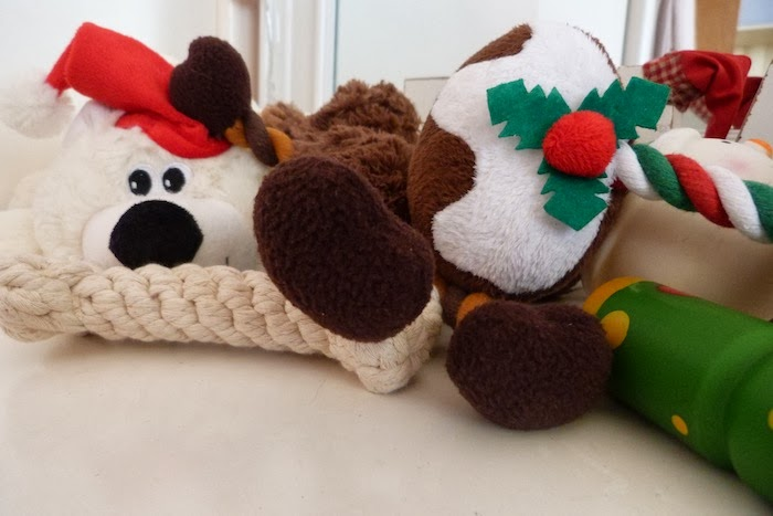 an image of pets at home christmas dog gifts