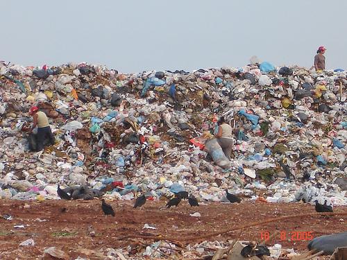 sacolinhas plasticas lixo - Sacolinha plástica são vítimas do próprio sucesso