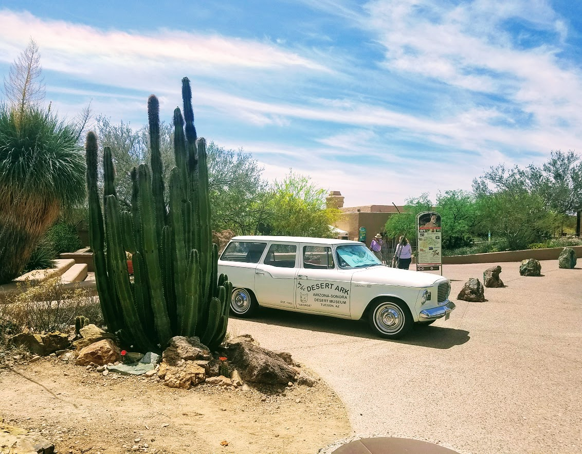 sonora desert museum entrance