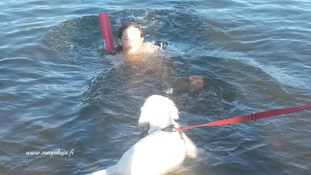 kultainennoutaja uimassa lapsi
