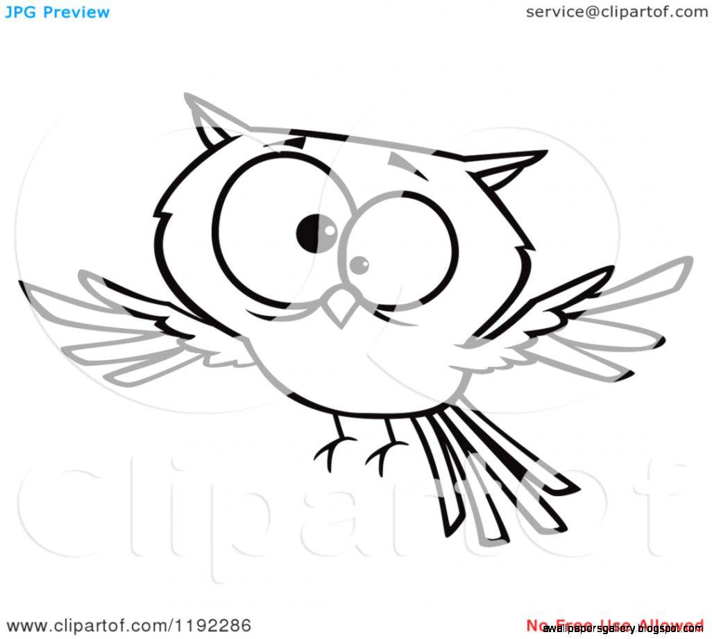 Dreamy Fantasy Black Girls Owls Black Tree Creative