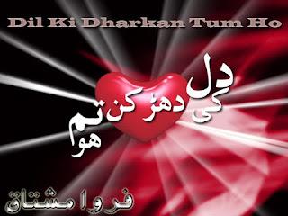 Dil Ki Dhadkan Ho Tum Episode 15 By Farwa Mushtaq