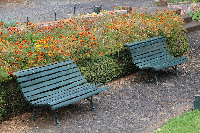 Park benches in the gardens