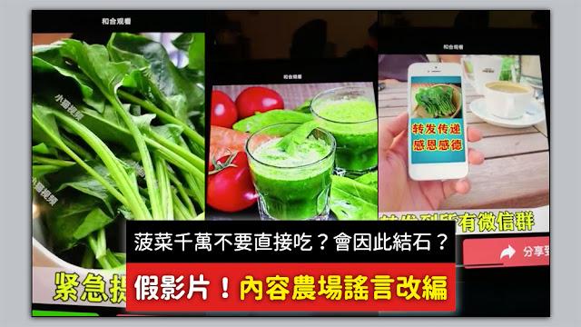 菠菜 直接吃 結石 謠言 影片