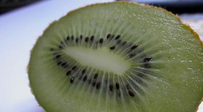 semillas de Kiwi