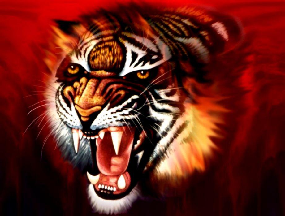 3d Art Tiger Wallpaper Dekstop Background Mega Wallpapers