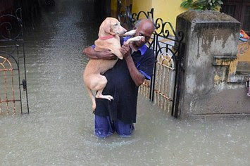 moments defining humanity chennai floods