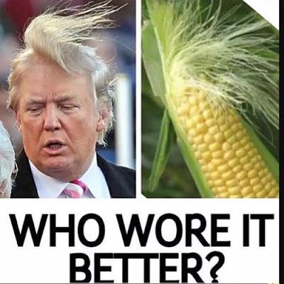 No chills! Internet trolls Donald Trump