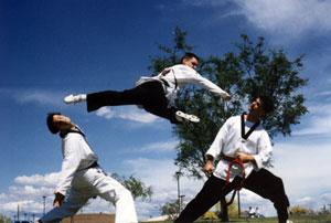 Taekwondo Training Phoenix: 2011