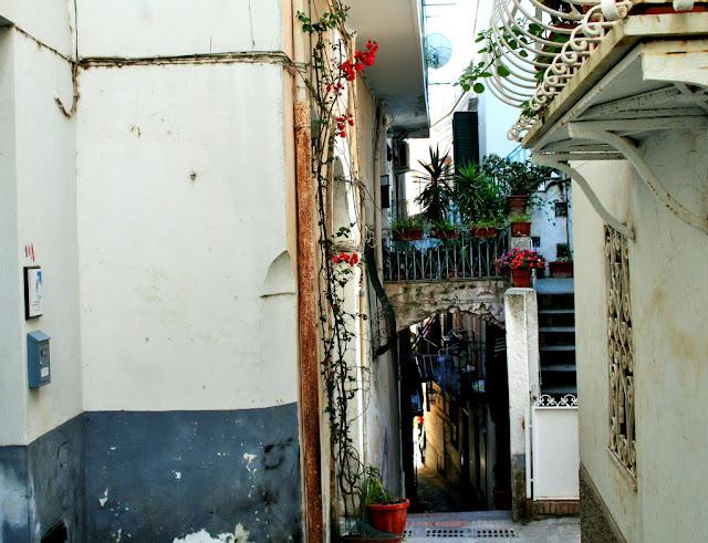 centro, muri, vie, piante