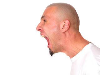Tüzel kişiye yapılan hakaret , hakaret sayılmaz