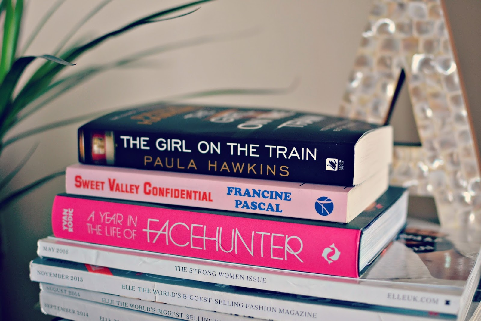 Girl on the Train, A year in the life of Facehunter, Sweet Valley Confidential book