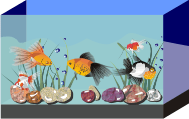 Create Aquarium in corel draw | Corel Draw Tutorial and Free