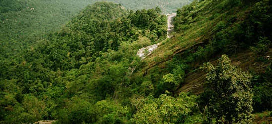 Tourist Places in Pachmarhi
