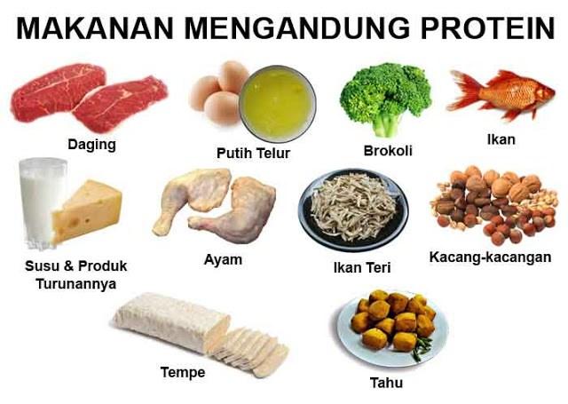 Image result for makanan berprotein