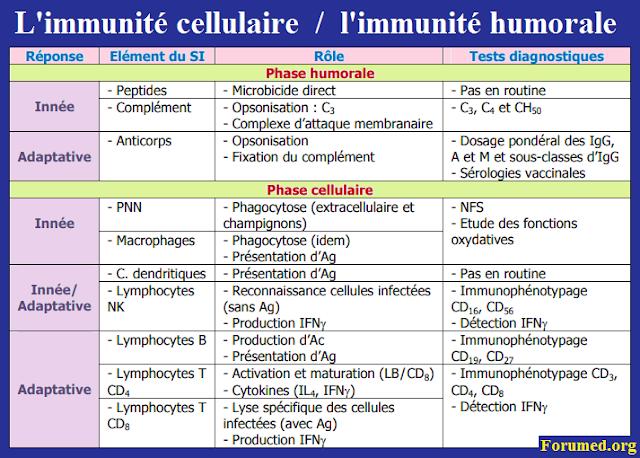 l'immunité cellulaire et l'immunité humorale