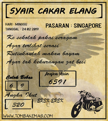 SYAIR SINGAPORE,24-02-2019