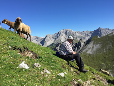 A man and his sheep - along the trail