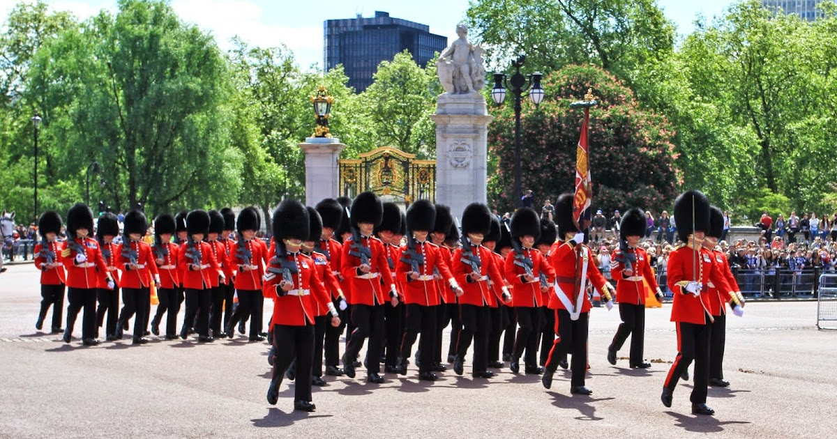 Are not chubby buckingham guard join