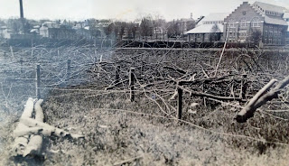 A black and white photograph of a torn up field covered in branches.