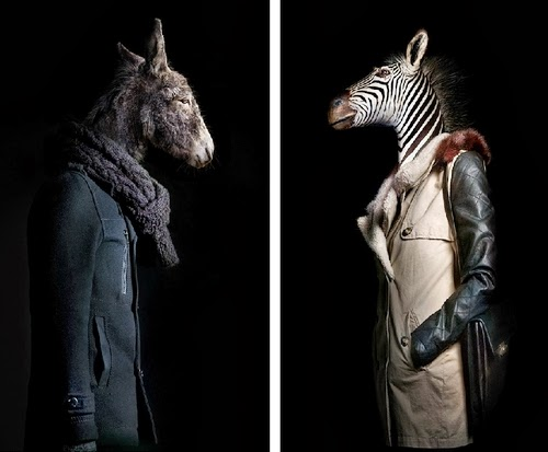 11-Donkey and Zebra-Miguel-Vallinas-Segundas-Pieles-Second-Skins-Smartly-Dressed-Animals-www-designstack-co