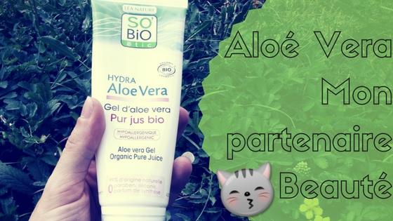aloe vera sauve l'acné