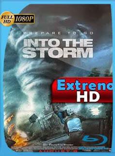 En el ojo de la tormenta 2014 HD [1080p] Latino [GoogleDrive] DizonHD