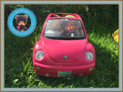 camping mike dundee bubbles volkswagen new beetle barbie kiki monchhichi singe Sekiguchi vintage ajena chien cobaye souris tortue rare collection