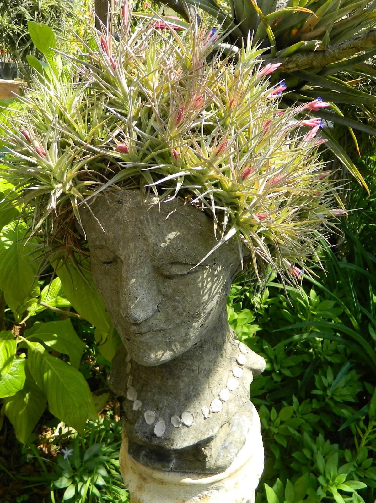 15 Dazzling Diy Head Planters