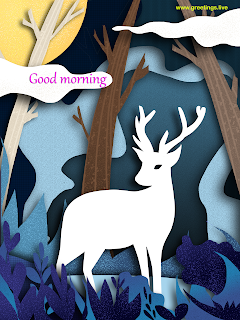 good morning animal illustration greetings cards