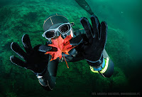Freediving Zakrzówek - Kraków - Andrzej Martin Kasiński -  PJ Freediving