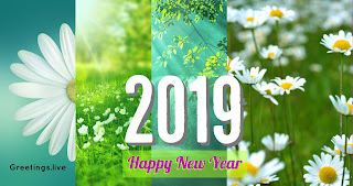 HAPPY NEW YEAR 2019 CELEBRATIONS 4K GREETINGS-Live