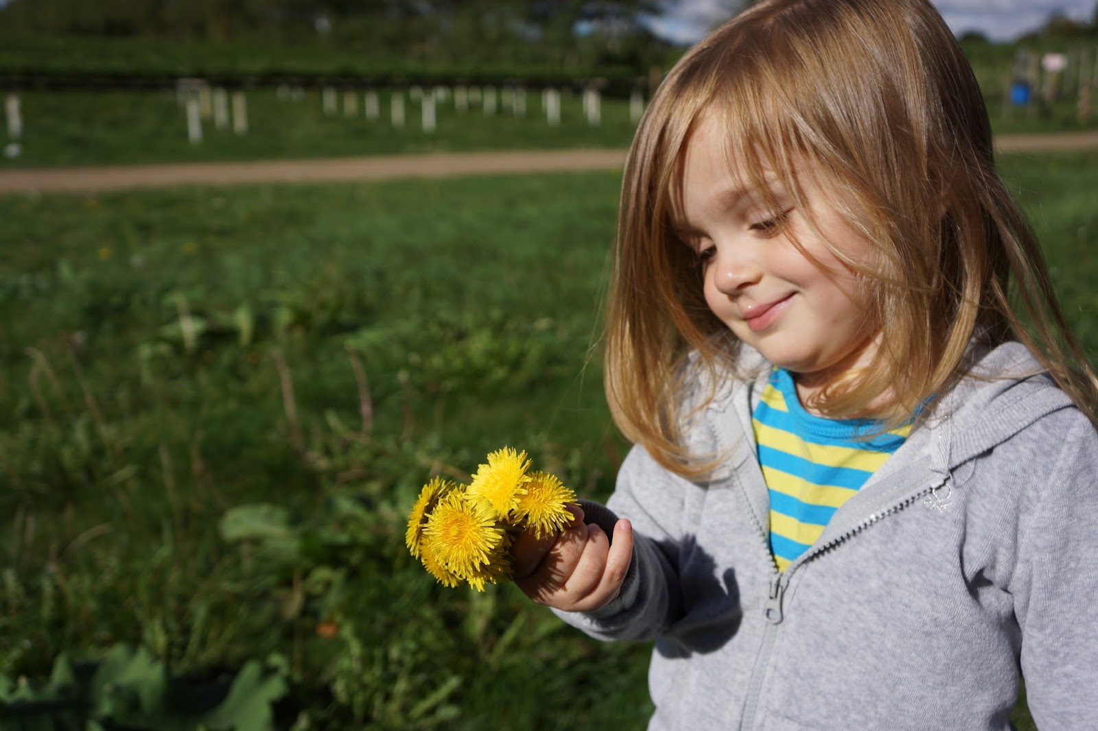 toddler girl smiling and holding a bunch of buttercups in her hand