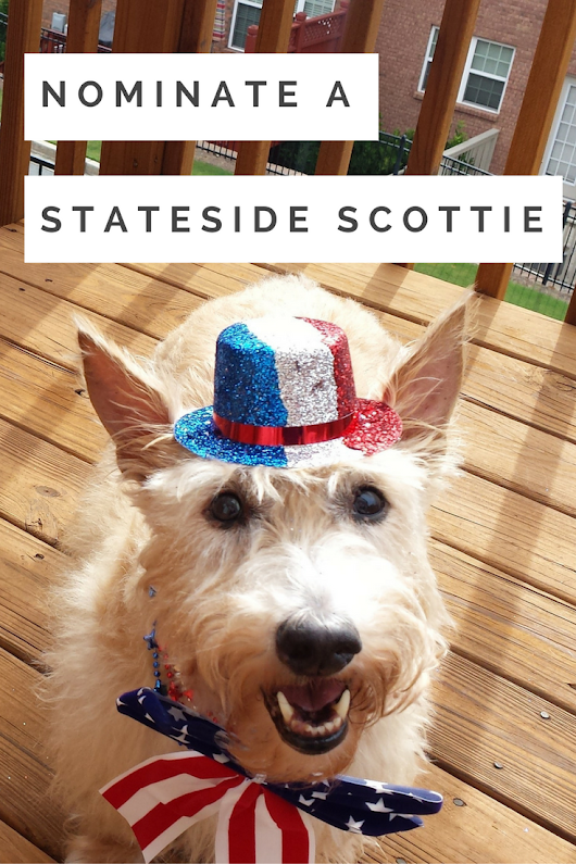 Nominate a Stateside Scottie