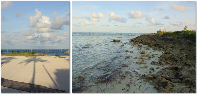 Left image: shadow of palm tree stretches across the sandy beach towards to ocean. Right Image: Iron shore meets the ocean.