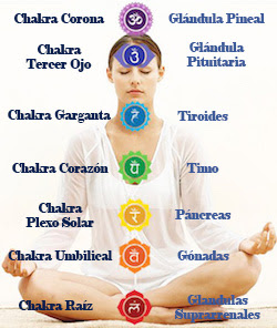 chakras, sistema endócrino