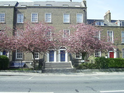 Georgian house with cherry blossom trees in front