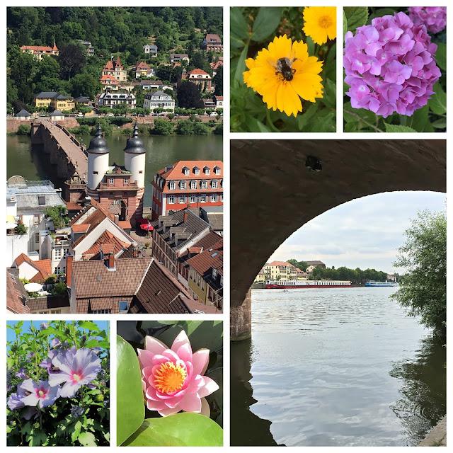 Alte Brücke Heidelberg - Heidelberg Altstadt - Neckar