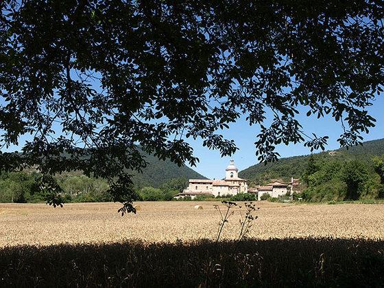 imagen_valpuesta_burgos_colegiata_castellano_cuna_cartulario