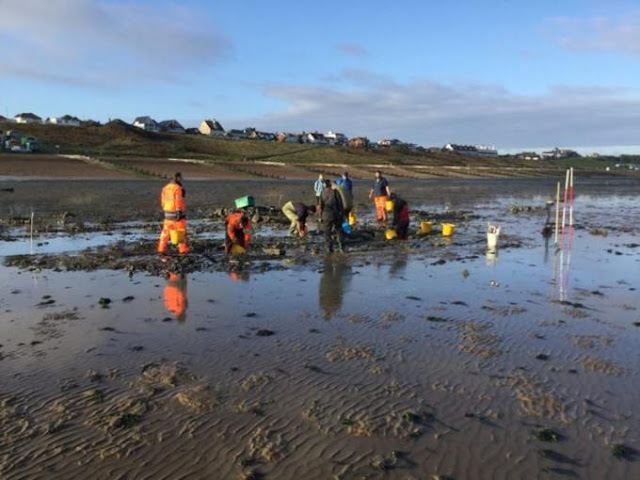 Tudor shipwreck discovered on Kent mudflats given protection