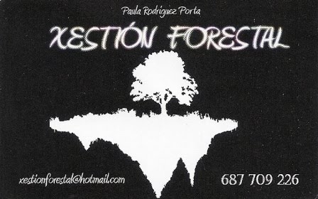 XESTION FORESTAL