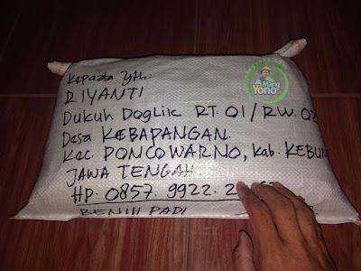 Benih Padi TRISAKTI Pesanan RIYANTI Kebumen, Jateng.  (Sesudah di Packing)