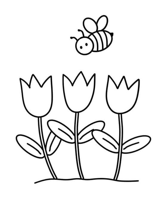Tranh tô màu bông hoa Tulip