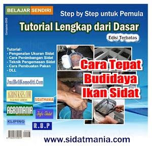 Cara Tepat Budidaya Sidat (Tutorial) (DVD) (Kode: TB)