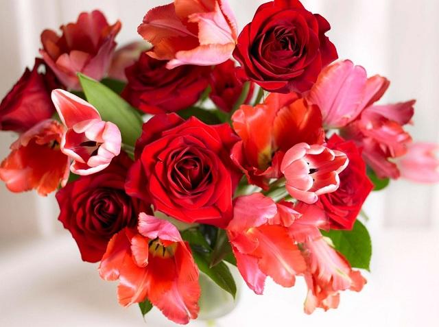 Bó hoa hồng đỏ đẹp nhất thế giới 17