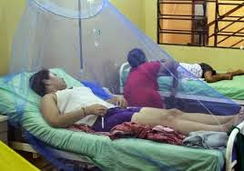 Chikungunya-Virus-Medidas-Preventivas
