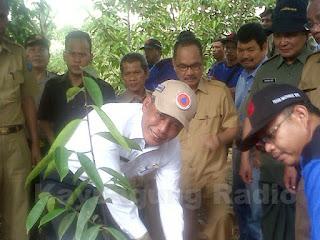 Kabupaten OKI Jadi Percontohan Restorasi Gambut di Indonesia